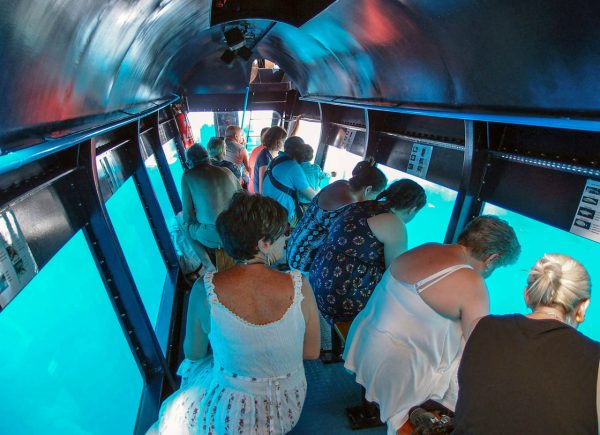 Прозрачное дно катера «Калипсо Стар»