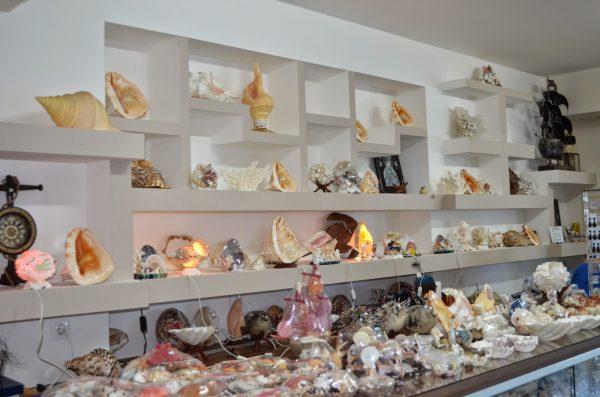 Музей ракушек на Корфу