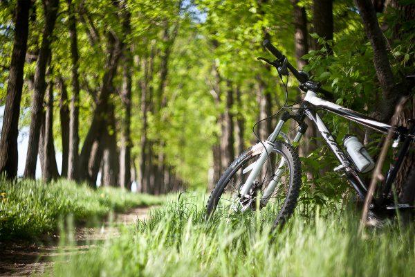 Велосипед стоит на поляне