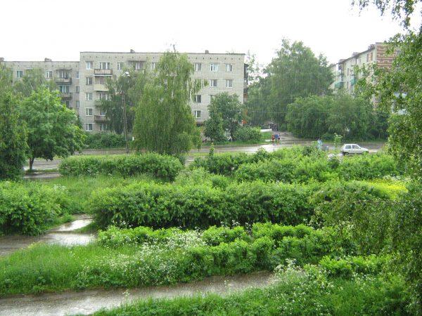 Зелёные насаждения в жилом квартале Кольчугино
