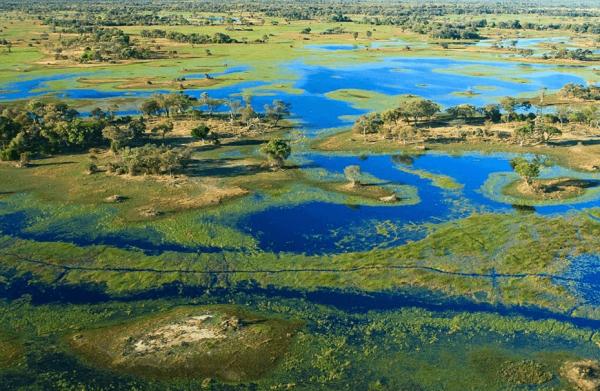 Мелкие островки в дельте реки Окаванго