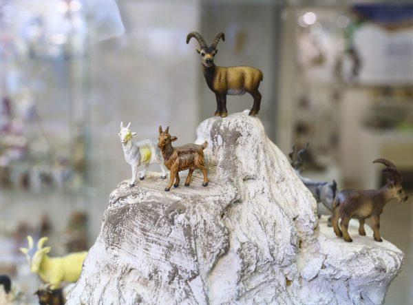 Экспонаты Музея козла в Твери