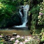 Водопад Герольдзау