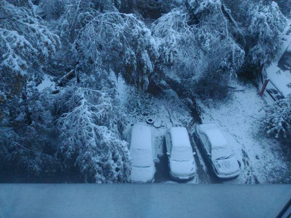 Три машины под снегом