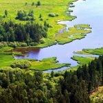 Озёра, луга и лесные массивы в парке Хортобадь