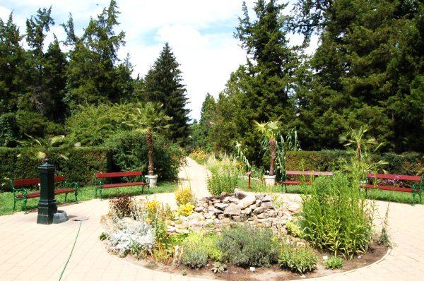 Зона отдыха со скамейками в ботаническом саду